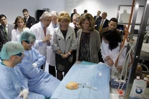 Madridul va fabrica organe