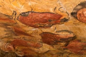Peștera Altamira se redeschide publicului