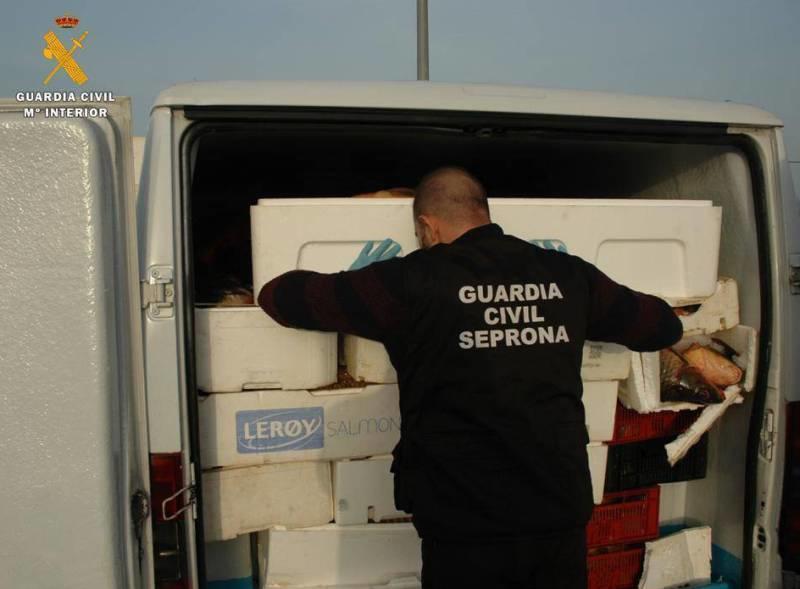 Pește stricat din Spania trimis spre consum în România